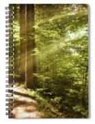 Eternal Woods Spiral Notebook