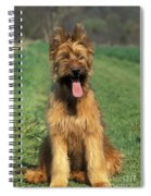 Briard Puppy Spiral Notebook