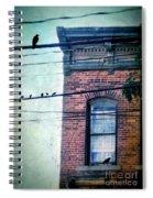 Brick Building Birds On Wires Spiral Notebook