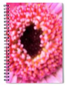 Bridesmaid Pink Spiral Notebook