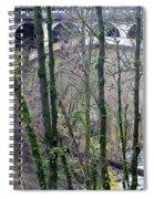 Bridge Arch Through The Trees Spiral Notebook