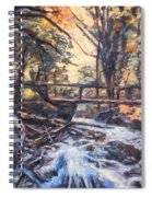 Morning Bridge In Woods Spiral Notebook