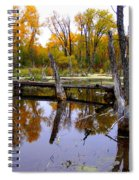 Bridge Over The Pond Spiral Notebook