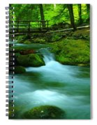 Bridge Over The Tananamawas Spiral Notebook