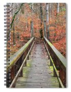 Bridge To Fall Spiral Notebook