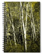 Briers And Brambles Spiral Notebook