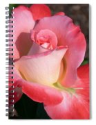 Brigadoon Rose Spiral Notebook