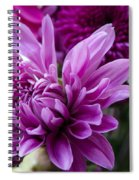 Bright And Beautiful Easter Mums Spiral Notebook