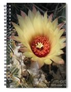 Bright And Beauty Spiral Notebook
