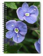 Bright And Blue Spiral Notebook