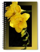 Bright And Yellow Spiral Notebook