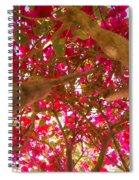 Bright Bougainvillea Spiral Notebook
