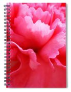 Bright Carnation Spiral Notebook