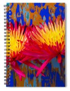 Bright Colorful Mums Spiral Notebook