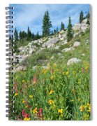 Bright Colors Of A Colorado Summer Spiral Notebook
