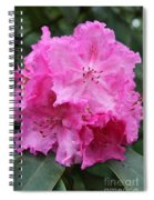 Bright Pink Blossoms Spiral Notebook