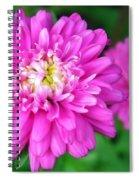 Bright Pink Zinnia Flowers Spiral Notebook