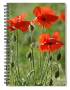 Bright Poppies 1 Spiral Notebook