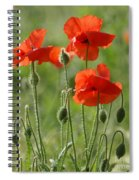 Bright Poppies 2 Spiral Notebook