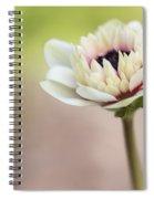 Bright Spring Spiral Notebook