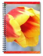 Bright Tulip Spiral Notebook