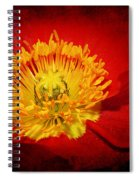Bright Yellow Poppy Center Spiral Notebook