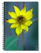 Bright Yellow Wildflower Spiral Notebook