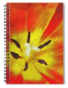 Brighter Days Spiral Notebook