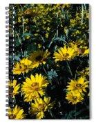 Brillant Flowers Full Of Sunshine. Spiral Notebook
