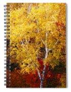 Brilliance Of Autumn On Rib Mountain Spiral Notebook