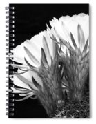 Brilliant Blossoms Diptych Left Spiral Notebook