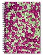 Brilliant Bunch - Photopower 1731 Spiral Notebook