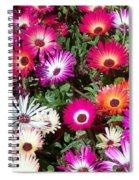 Brilliant Flowers Spiral Notebook