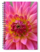 Brilliantly Dahlia Spiral Notebook