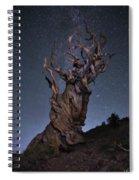 Bristlecone Ballet Spiral Notebook