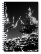Bristlecone Twins In Infrared Spiral Notebook