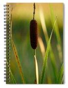 Broadleaf Cattail Spiral Notebook