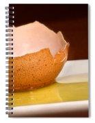 Broken Brown Egg  Spiral Notebook
