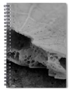 Broken Piece Spiral Notebook