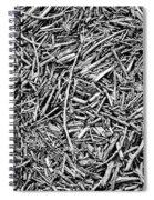 Broken Twigs Spiral Notebook