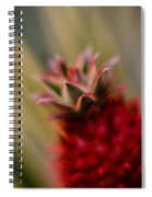 Bromeliad Crown Spiral Notebook