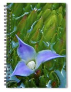 Bromeliad Pond Spiral Notebook