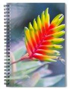 Bromeliad Symphony  Spiral Notebook