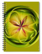 Bromiliad Orb Spiral Notebook