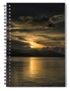 Bronze Spiral Notebook