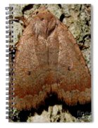 Bronze Moth Spiral Notebook
