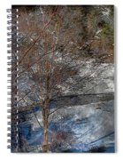 Brook And Bare Trees - Winter - Steel Engraving Spiral Notebook