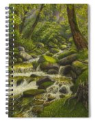 Brook In The Forest Spiral Notebook