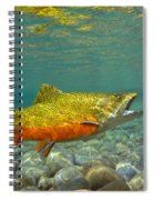Brook Trout And Coachman Wet Fly Spiral Notebook