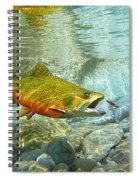 Brook Trout And Silver Doctor Spiral Notebook